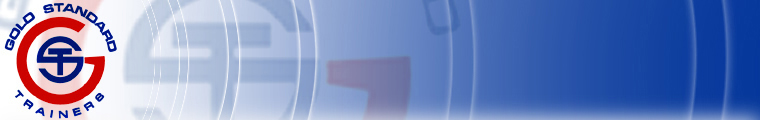 Chicago Personal Trainer Logo